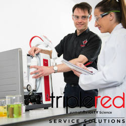 Triple Red - Service Testimonials